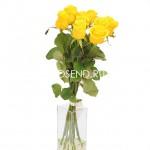 Букет 9 желтых роз